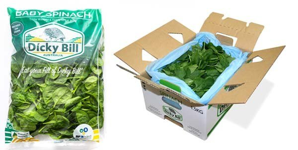 Baby Spinach Retail Pack