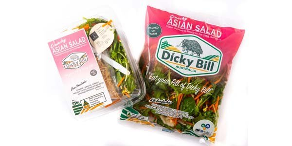 Crunchy Asian Salad Packaging